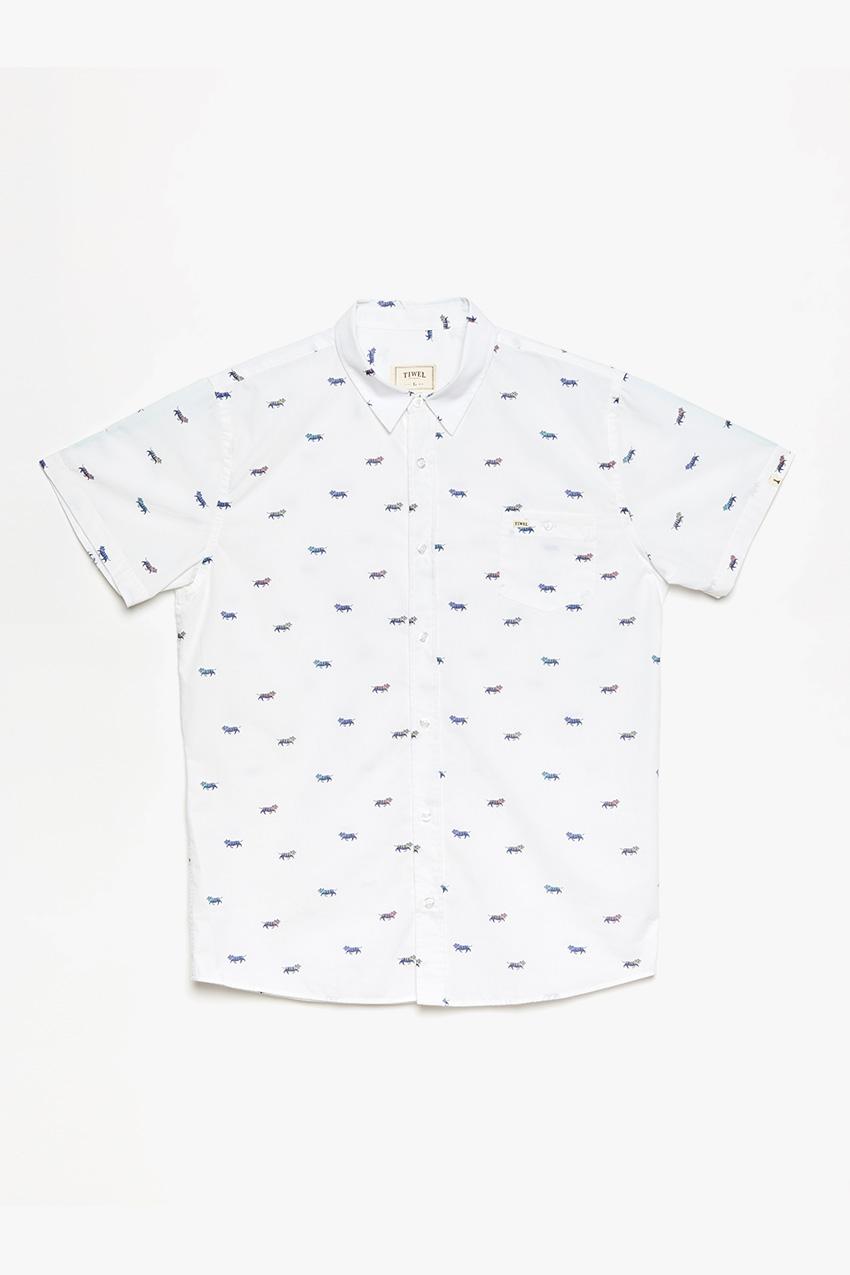 Camisa-Belo-01