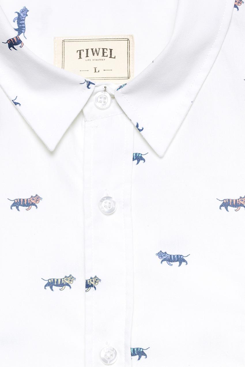 Camisa-Belo-05