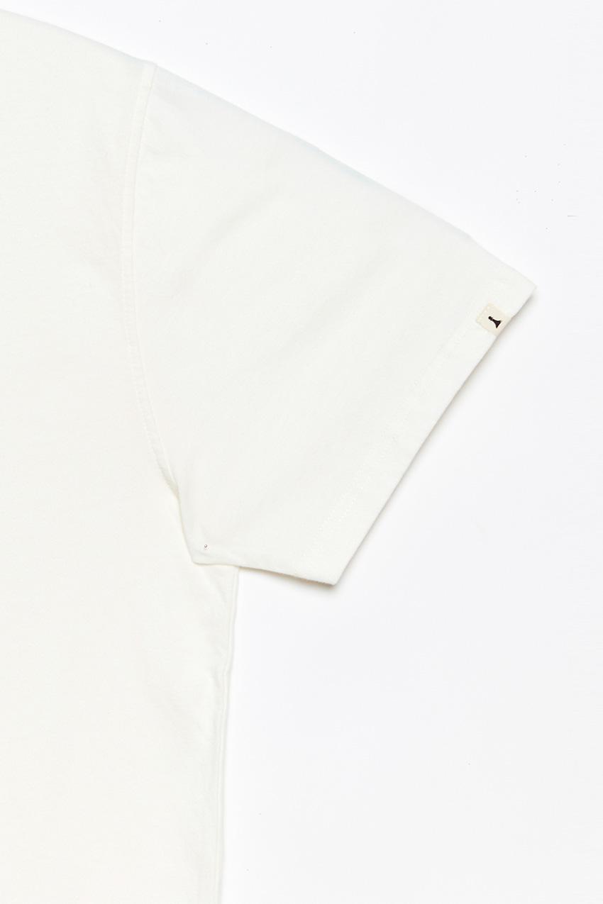 Camiseta-Dog-Days-04