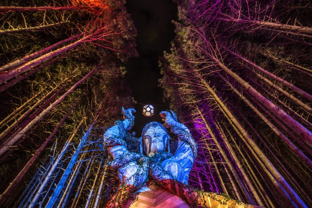 Electric forest music