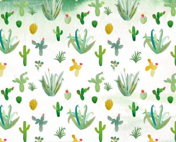 cactus tiwel ropa